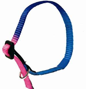 PetCom, nylonhalsband (flerfärgat)