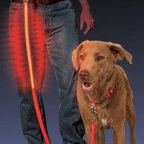Hundkoppel med LED-belysning